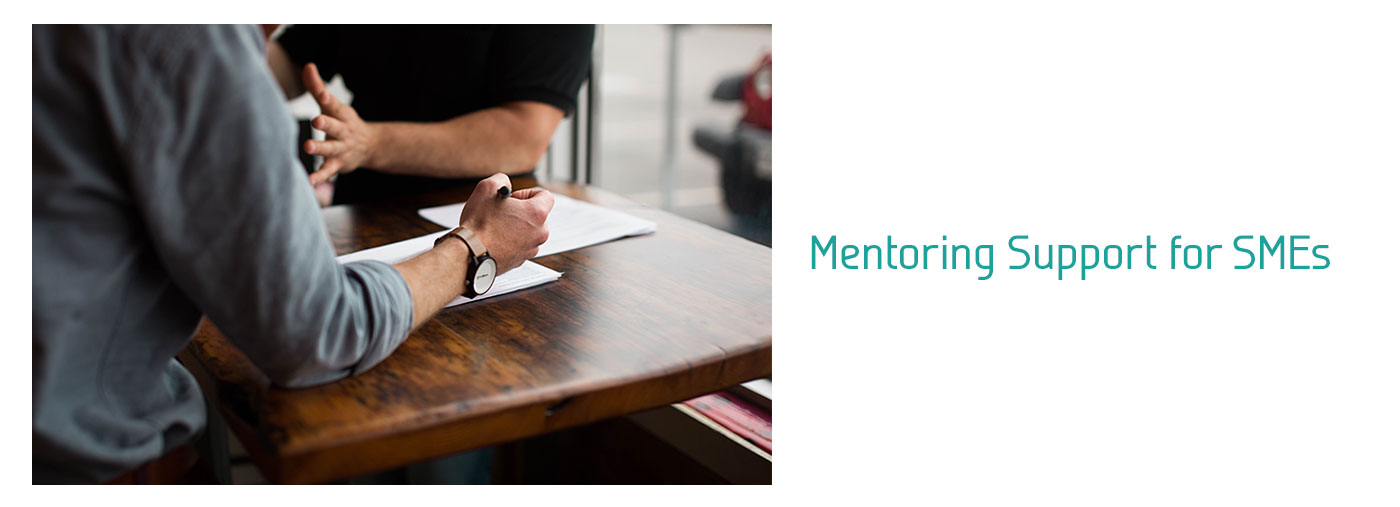 Mentoring Support for SMEs
