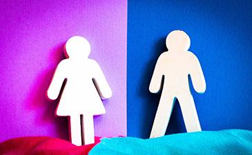 İNGEV'den Toplumsal Cinsiyet Odaklı İş Piyasası Değerlendirmesi